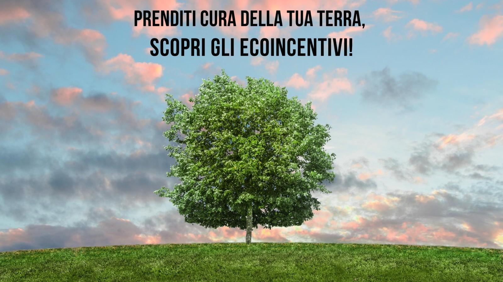 Ecoincentivi auto 2020